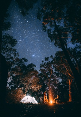 کمپ-چادر-شب-جنگل