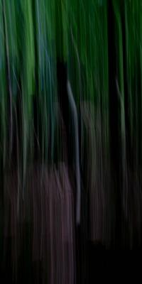 سبز-مشکی-سیاه