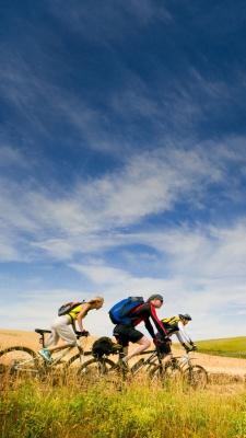 دشت-دوچرخه سواری-دوچرخه-گروه
