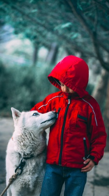 قرمز-سگ-پسر-پسر بچه