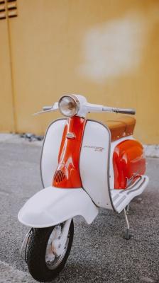 سفید-موتور