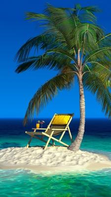 جزیره-نخل-درخت نخل-صندلی-آبی-فیروزه ای