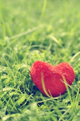 قلب-قرمز-سبز-چمن