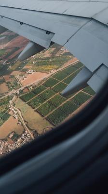 بال هواپیما-ویو-منظره