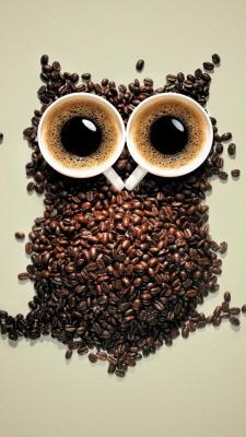 قهوه-دانه قهوه-فنجان-جغد