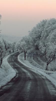 برفی-برف-جنگل-زمستان-جاده