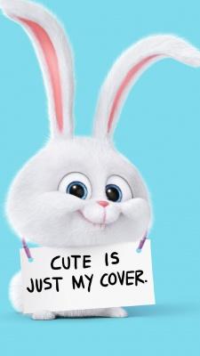 زندگی مخفی حیوانات-خرگوش-فیروزه ای-آبی