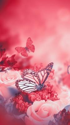 صورتی-قرمز-پروانه-حشرات
