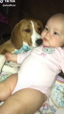 سگ-حیوان-بچه-دختر بچه