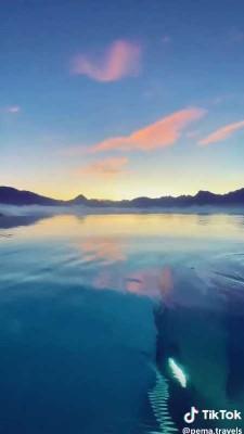 استخر-دریاچه